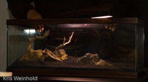 conférence aquarium nancy