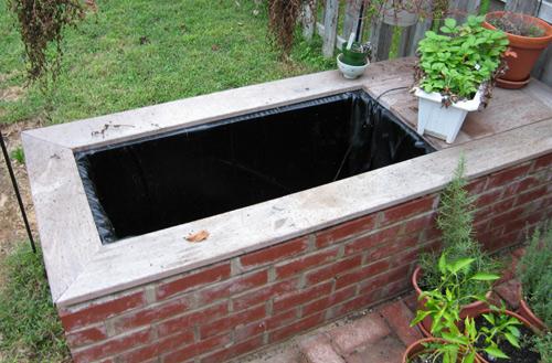 Empty Pond - 10-10-2006